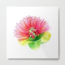 Red Flower / Ohia Lehua Metal Print