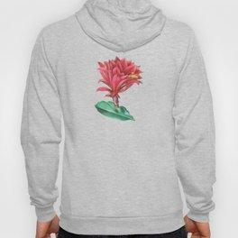 Blooming cactus I Hoody