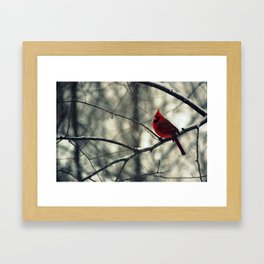 Winter friend 2. Framed Art Print