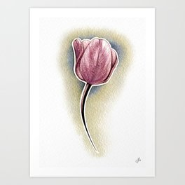 Pink tulip in a yellow haze Art Print