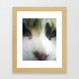 CATATONIC STARE Framed Art Print