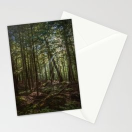 Rays of Sun in the Forest Stationery Cards