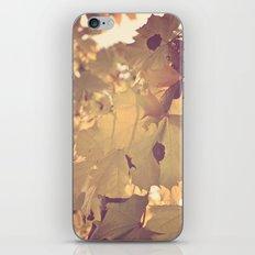Fader iPhone & iPod Skin
