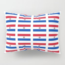 flag of paraguay 2 -paraguyan,asuncion,spanish, south america, latin america,pan flute,coffee,forest Pillow Sham