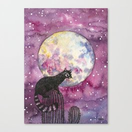 Full Moon Ringtail Cat  Canvas Print