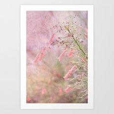 Through the Dreams of Pink Art Print