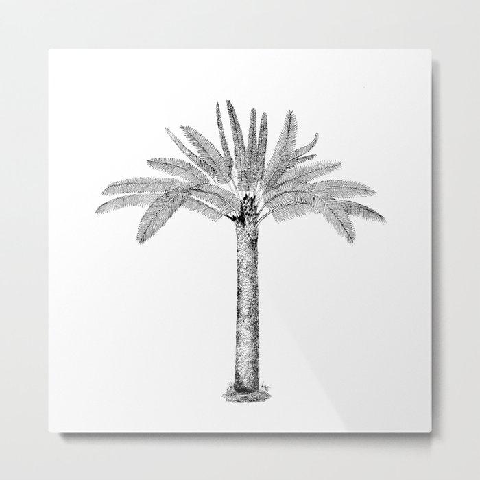 Vintage Palm Tree black and white Metal Print