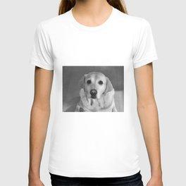 Cookies PLEASE! B&W T-shirt