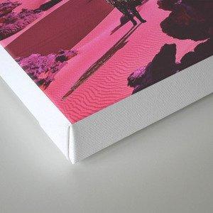 retah Canvas Print