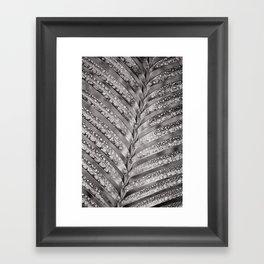 Secret Garden ~ No.4 Framed Art Print