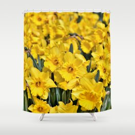 Yellow Narcissus Flowers Shower Curtain