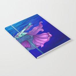 Pole Stars - PISCES Notebook