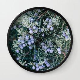 Botanical Gardens Evergreen #335 Wall Clock