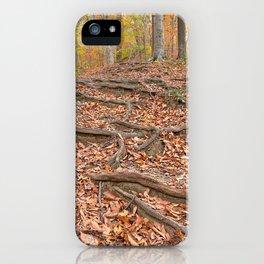 Autumn Avalon Forest Trail iPhone Case