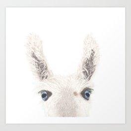 The Llama II (Digital Painting)  Art Print