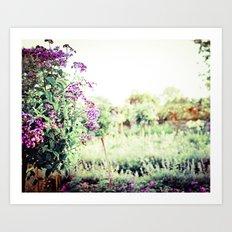 Midsummer Splendor Art Print