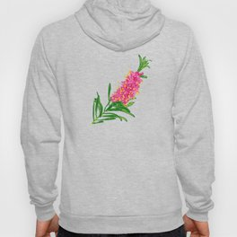 Beautiful Pink Australian Native Floral Illustration Hoody