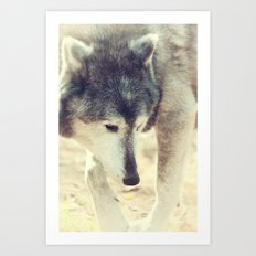 Wolfs Beauty Art Print