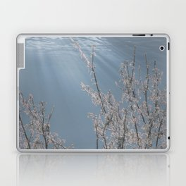 Breathing Underwater Laptop & iPad Skin