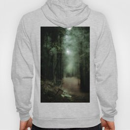In the forest of Washington state, ponderosa pine trees Hoody