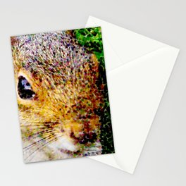 The many faces of Squirrel 3 Stationery Cards