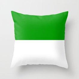 Jzedlitz_Flag_of_duchy_Sachsen-Meiningen_1874-1918 Throw Pillow