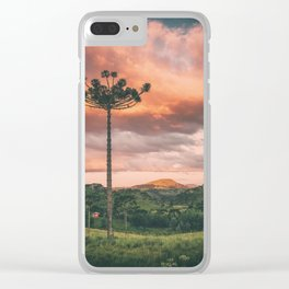 Araucaria Sky Clear iPhone Case