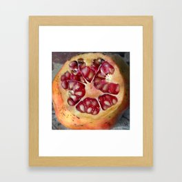 Pomegranate Still Life Framed Art Print