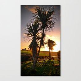 Cornish Palms Canvas Print