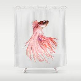 Betta splendens Shower Curtain