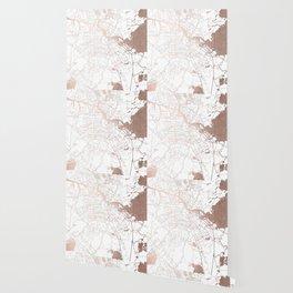 Amsterdam White on Rosegold Street Map Wallpaper
