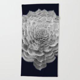 Succulents collage 2 Beach Towel