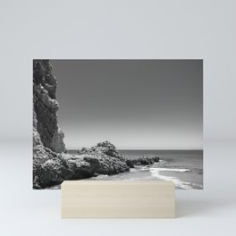 Birds sit on rocks along Rancho Palos Verdes coastline Mini Art Print