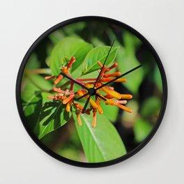 The Beautiful Wall Clock