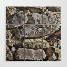 Peekaboo Stoat by Alan M Hunt Wood Wall Art