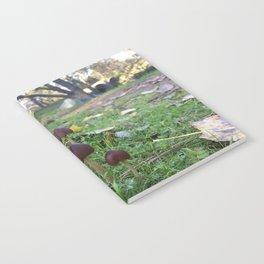 Found Fungus Notebook