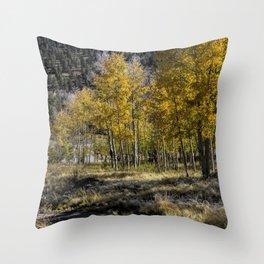 Autumn Stroll Throw Pillow