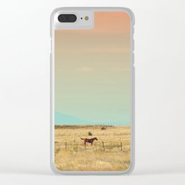 251 | marfa Clear iPhone Case