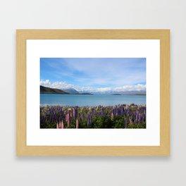 Lake Tekapo - Flower Field Framed Art Print