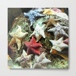 STAR FISH Metal Print