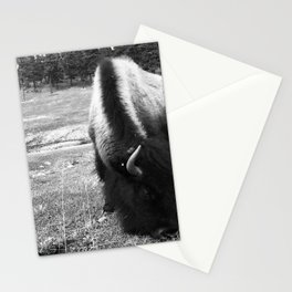 Lost in fur Stationery Cards