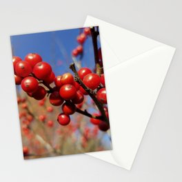 Winterberries glow against a blue autumn sky Stationery Cards