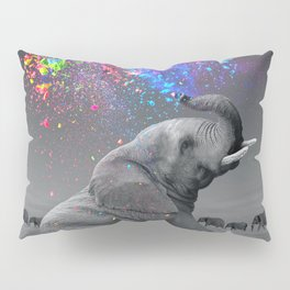 True Colors Within Pillow Sham