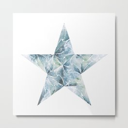 Frosted Star Metal Print