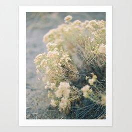 Bend, Oregon on Film Art Print