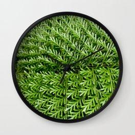Gentle Fern Wall Clock