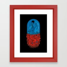 Capsule 41 Framed Art Print
