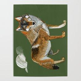 Totem Carpathian wolf Poster