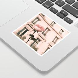 Paris in Blush Pink II Sticker
