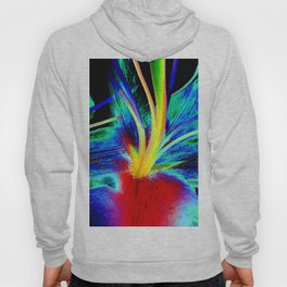 Colourful Lily Abstract Hoody